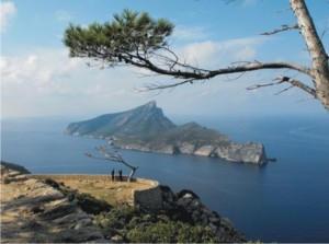 It's worth getting up high to appreciate the views. Here's the island of Sa Dragonera, viewed from La Trapa, Mallorca.