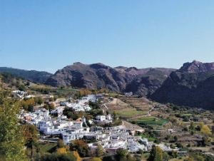 One of the White VIllages