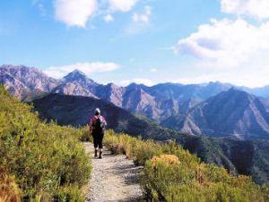 Axarquia Walk 8 Path to Los Pradillos