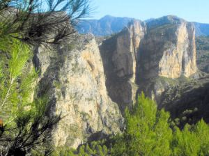 A tour of Raco Roig (Walk 20)