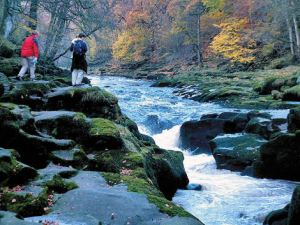 The spectacular River Strid (Walk 1)