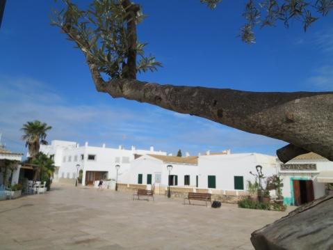 IMG_8798 Formentera