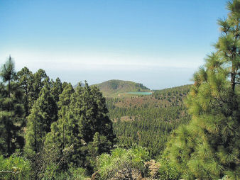 View from 'Walkers Who Lunch' route above Tenerife's south coast